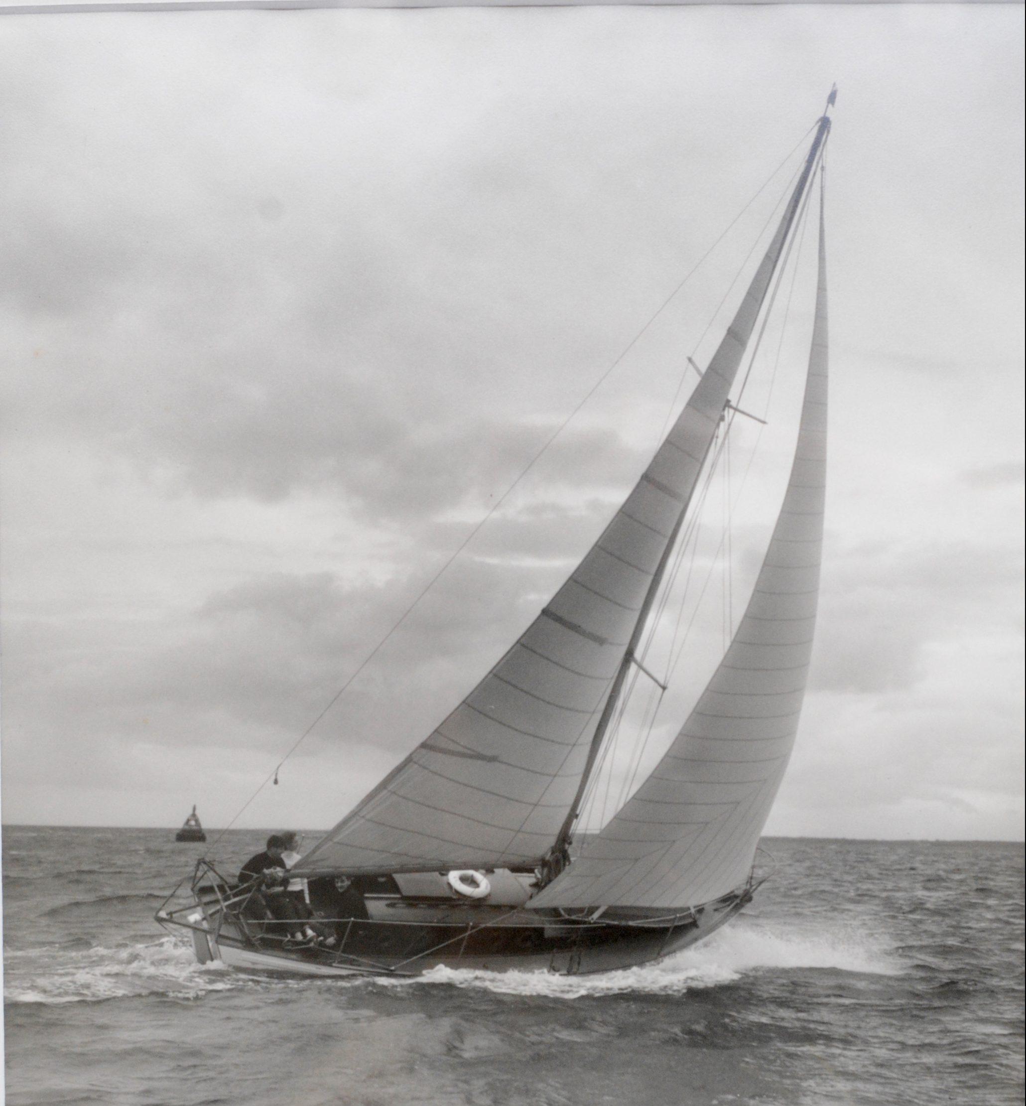V 49 Blue Jenny